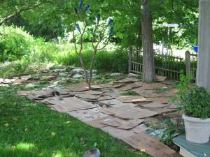 Les cartons sont excellent pour desherber vos jardins